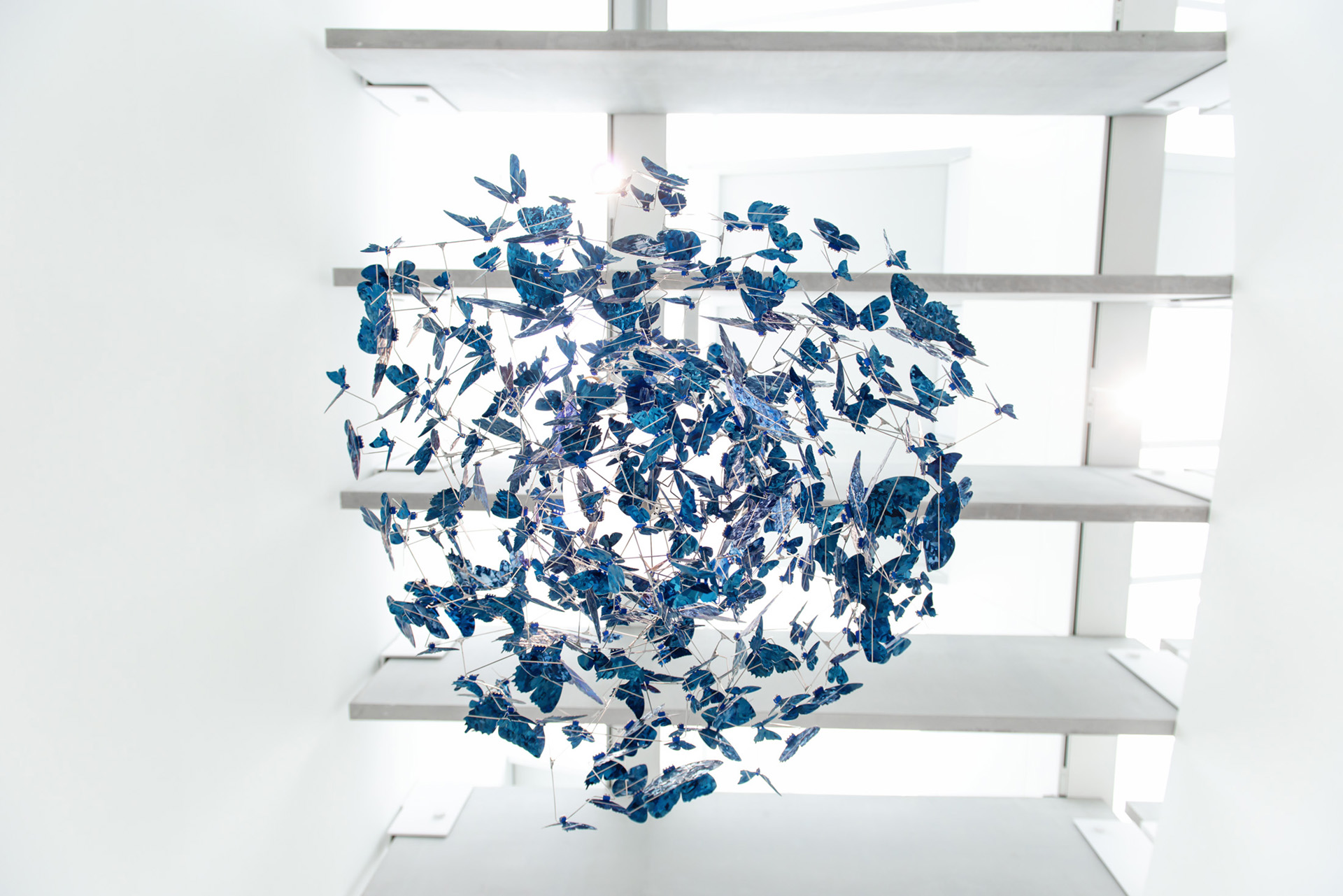 "Butterfly chandelier ""Virtue of Blue"" at the Corning Museum of Glass"
