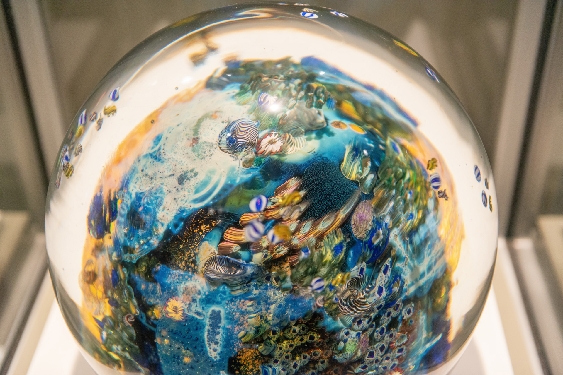 Under the ocean paperweight