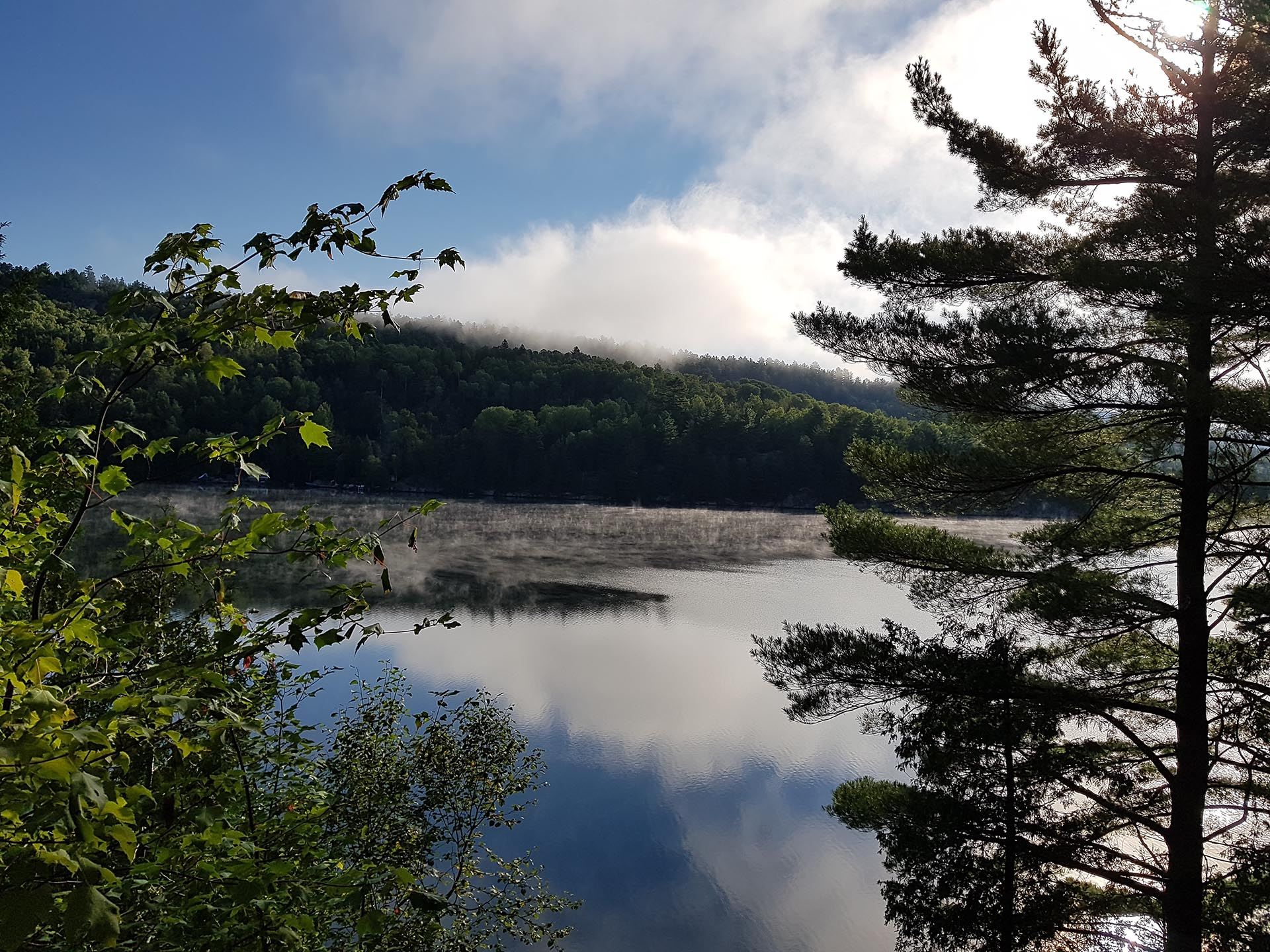 The view of the lake from Kina's cottage with fog